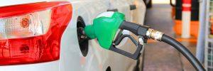 Gpl o diesel? Guida alla scelta della soluzione migliore